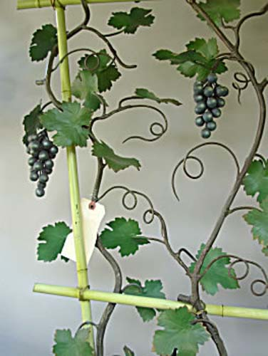 Italian Tole Grape Tree